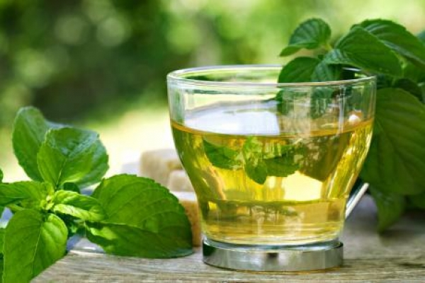 Russians will drink only pure green tea